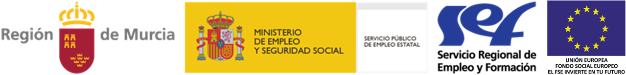http://talentomurcia.es/wp/wp-content/uploads/2015/09/talentomurcia-subvencionado-por.png